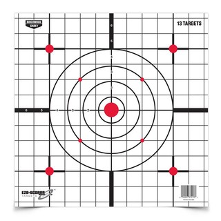 Birchwood Casey EZE-Scorer sight in target 12""